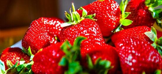 Erdbeeren von Gut Stubbe